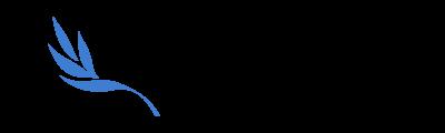 Vorbereitungshandbuch für MUNBW und MUN-SH Logo